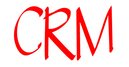 The Importance of CRM and Big Data